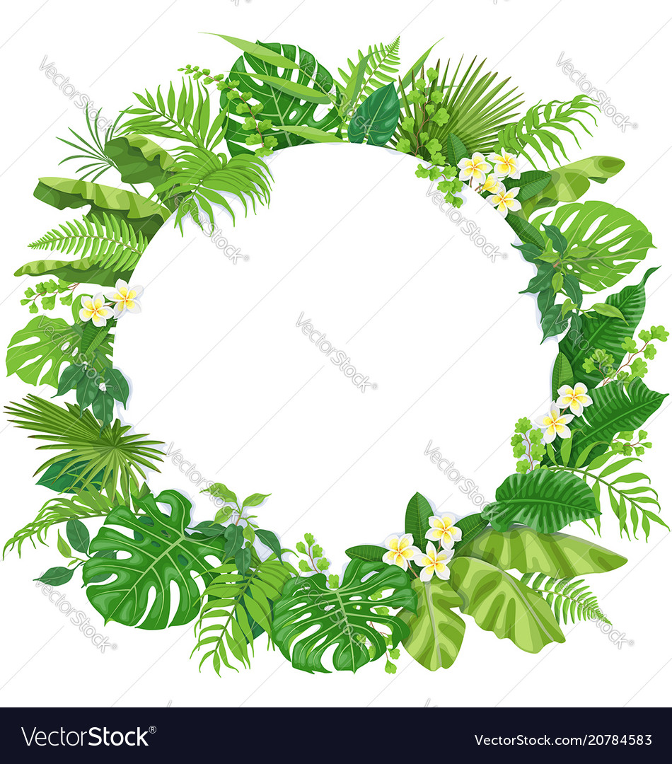 Round Frame With Tropical Leaves And Flowers Vector Image Tropical jungle leaves frame on pink background vector. vectorstock
