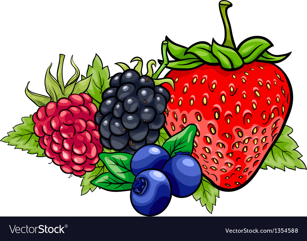 Berry fruits cartoon vector image