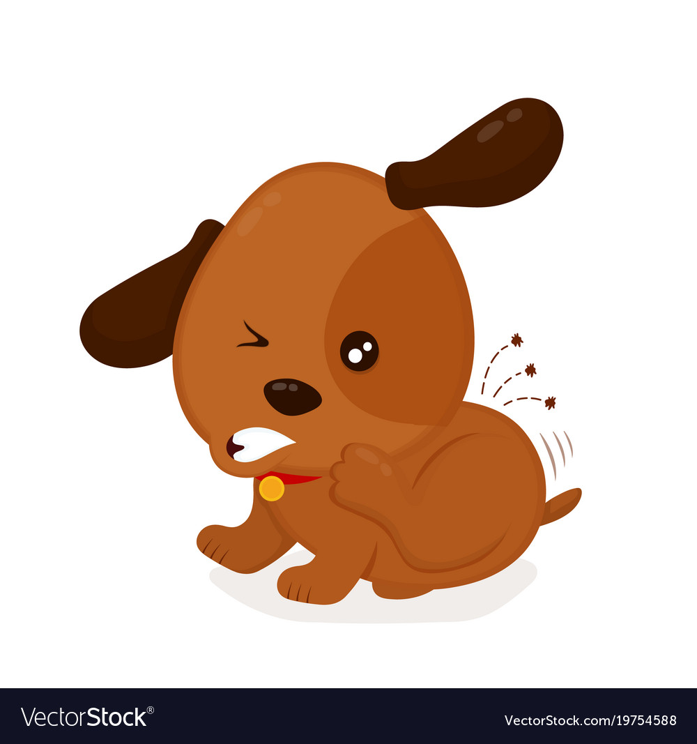Itchy Dog Scratches Fleas Off Vector Image