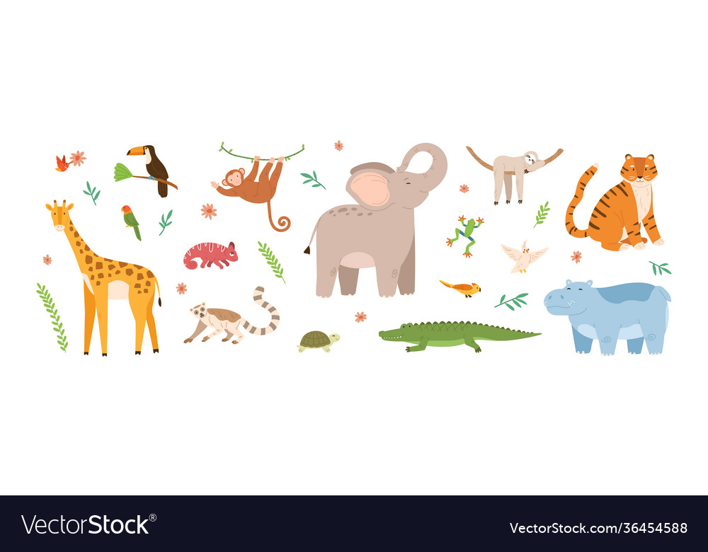 Set cute jungle animals collection exotic