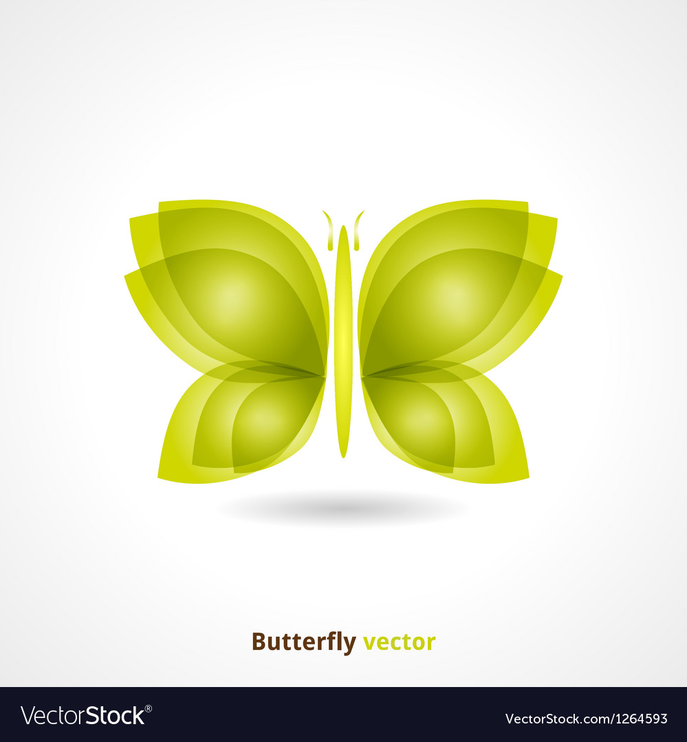 Butterfly Backgrund vector image