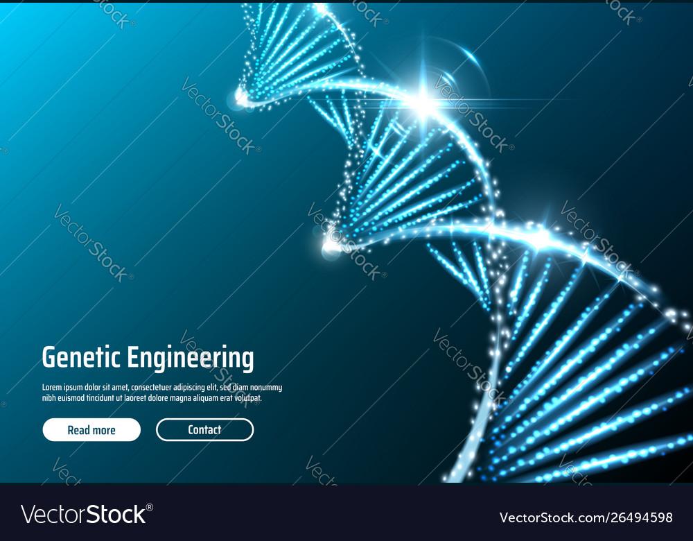 Dna structure genetic engineering web app