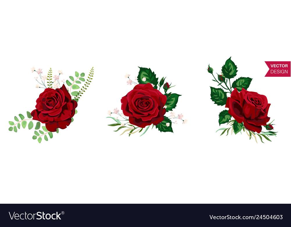 Roses wedding invitation card for design 01