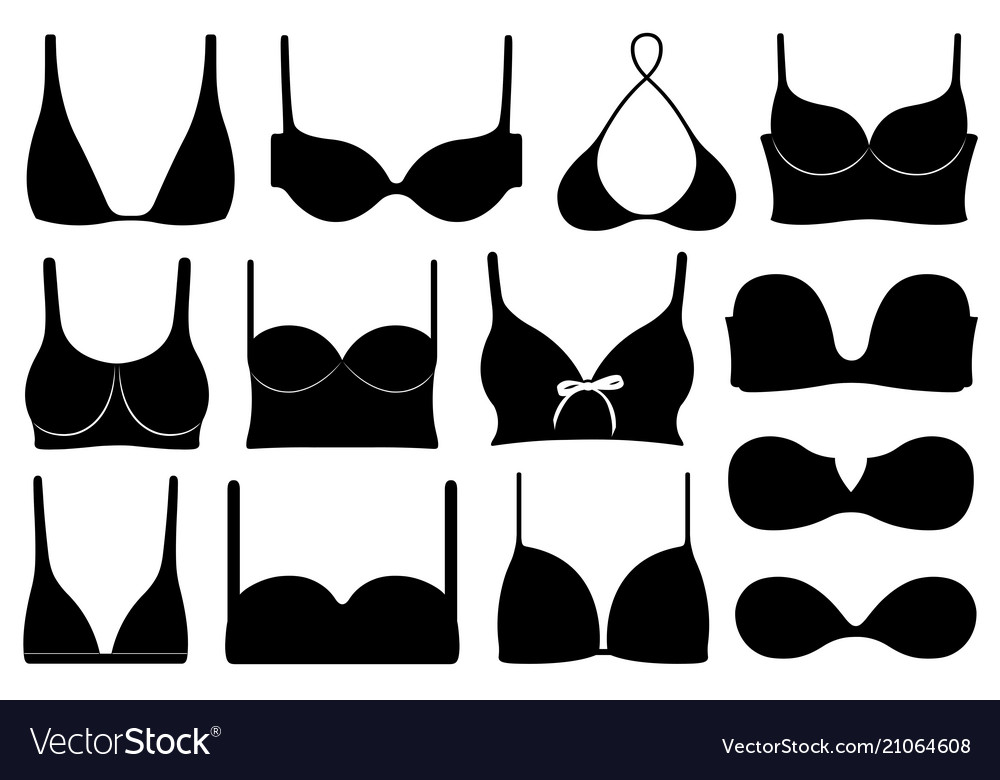 Set of different bras vector image