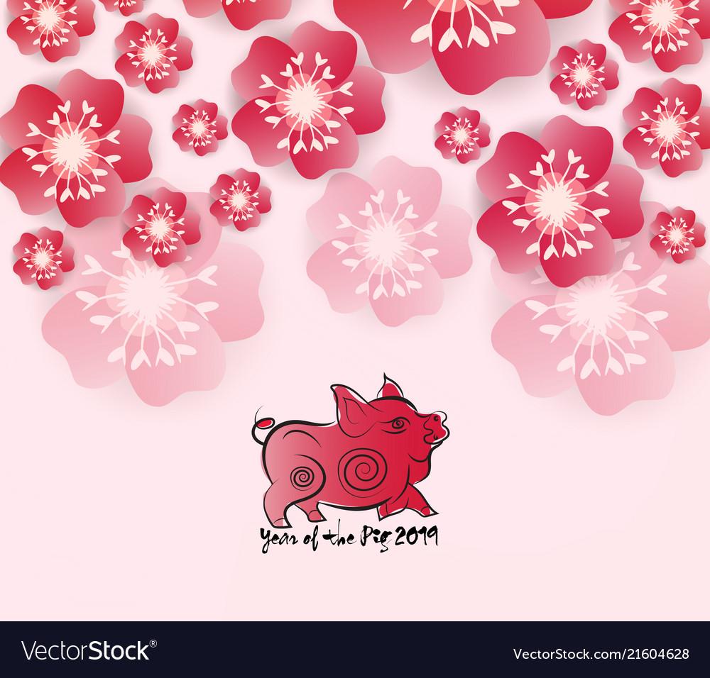 Chinese New Year 2019 Background Blooming Sakura Vector Image