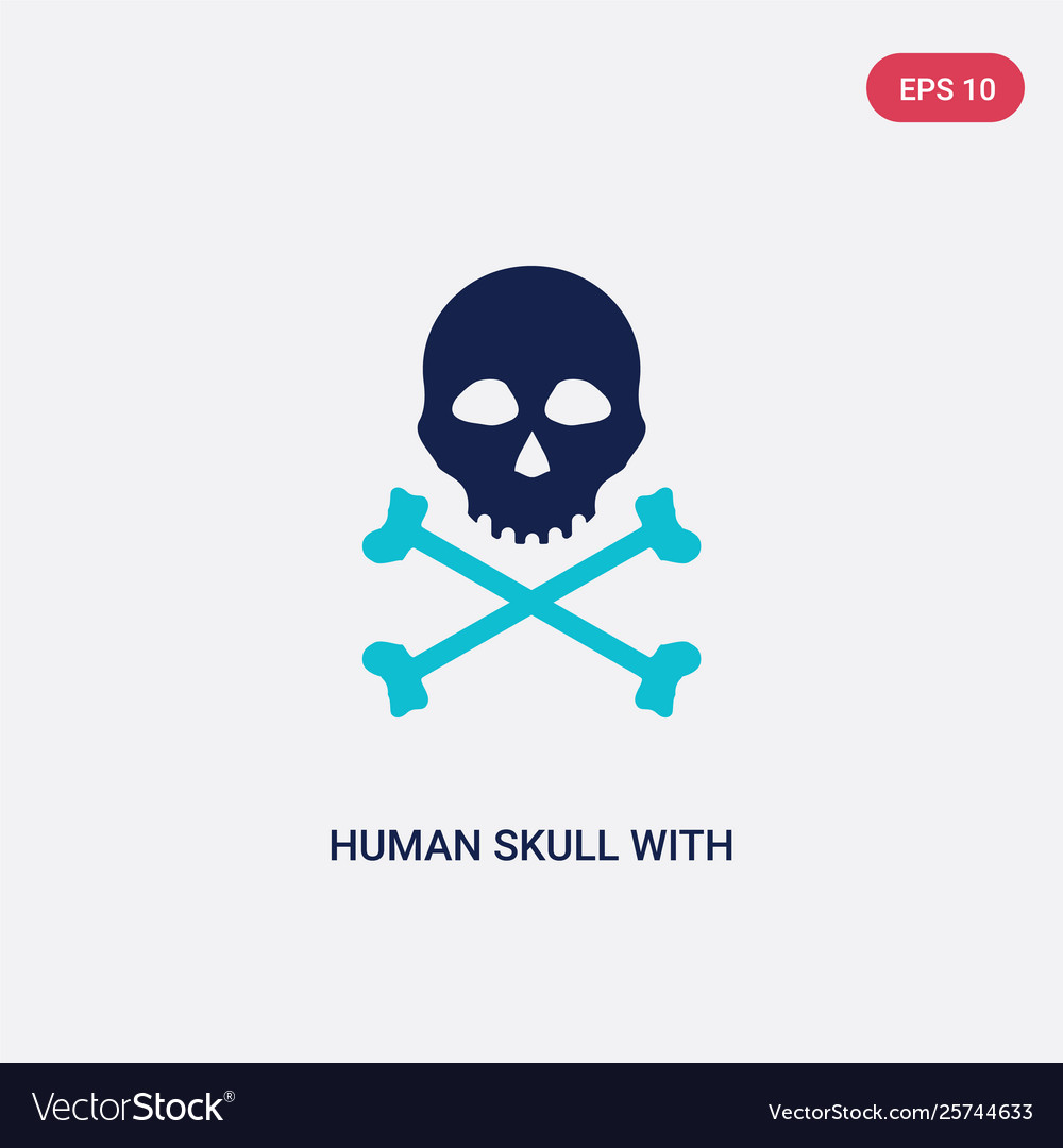 Two color human skull with crossed bones icon