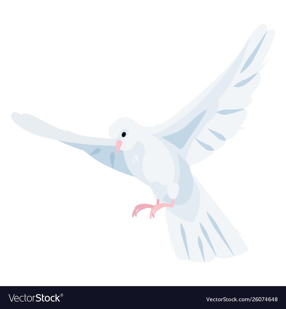 White dove icon beautiful religious white symbol