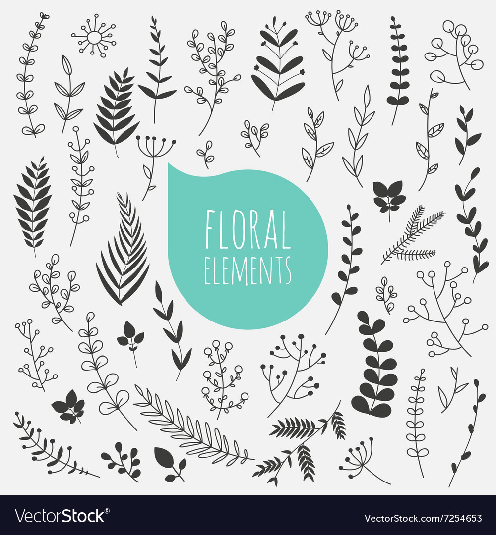 Floral elements collection spring flowers