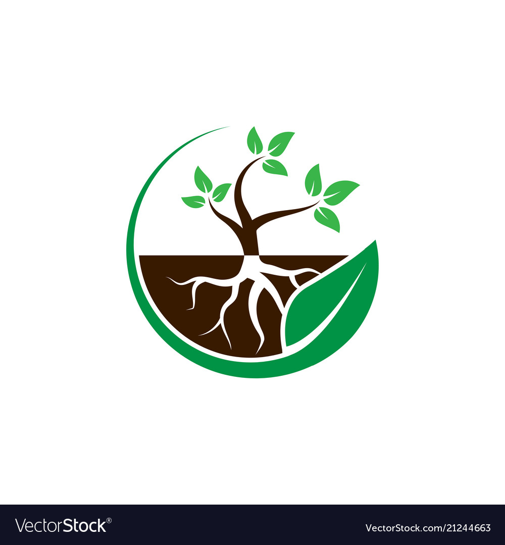 Plant with root in a circle leaf logo design