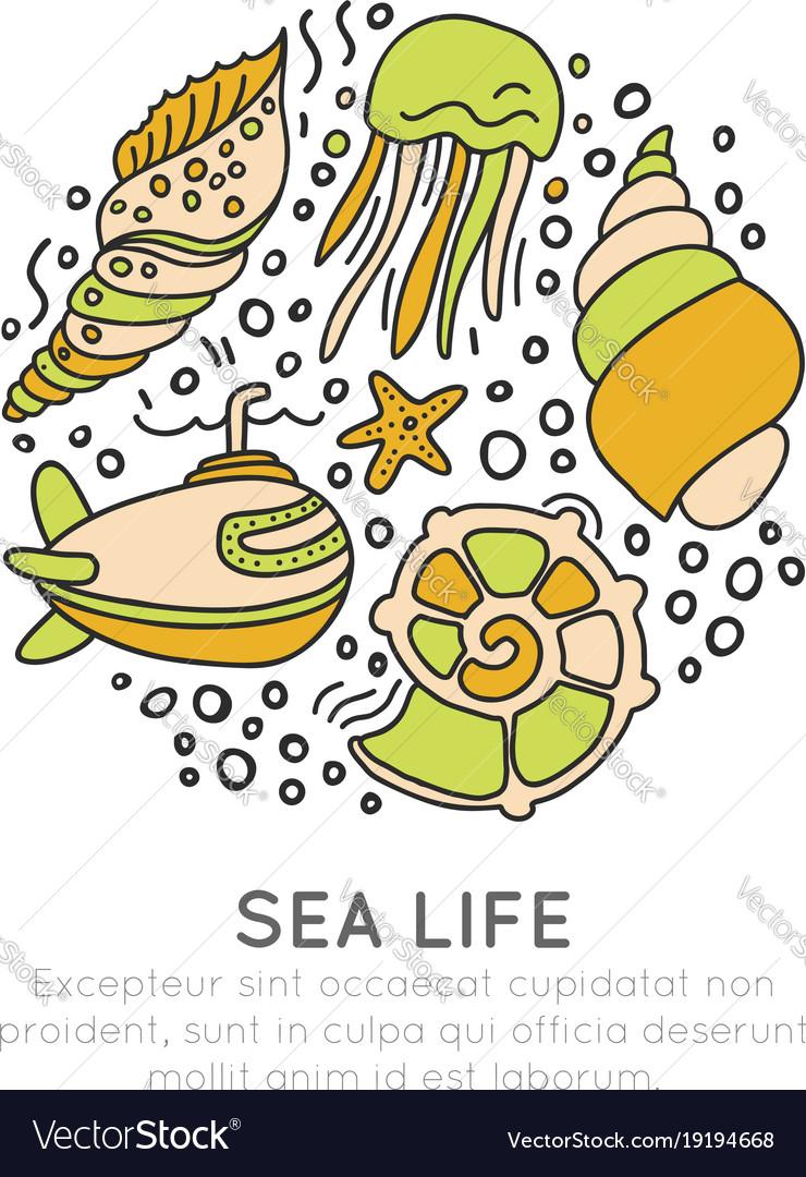 Sealife sketched cartoon concept seashell