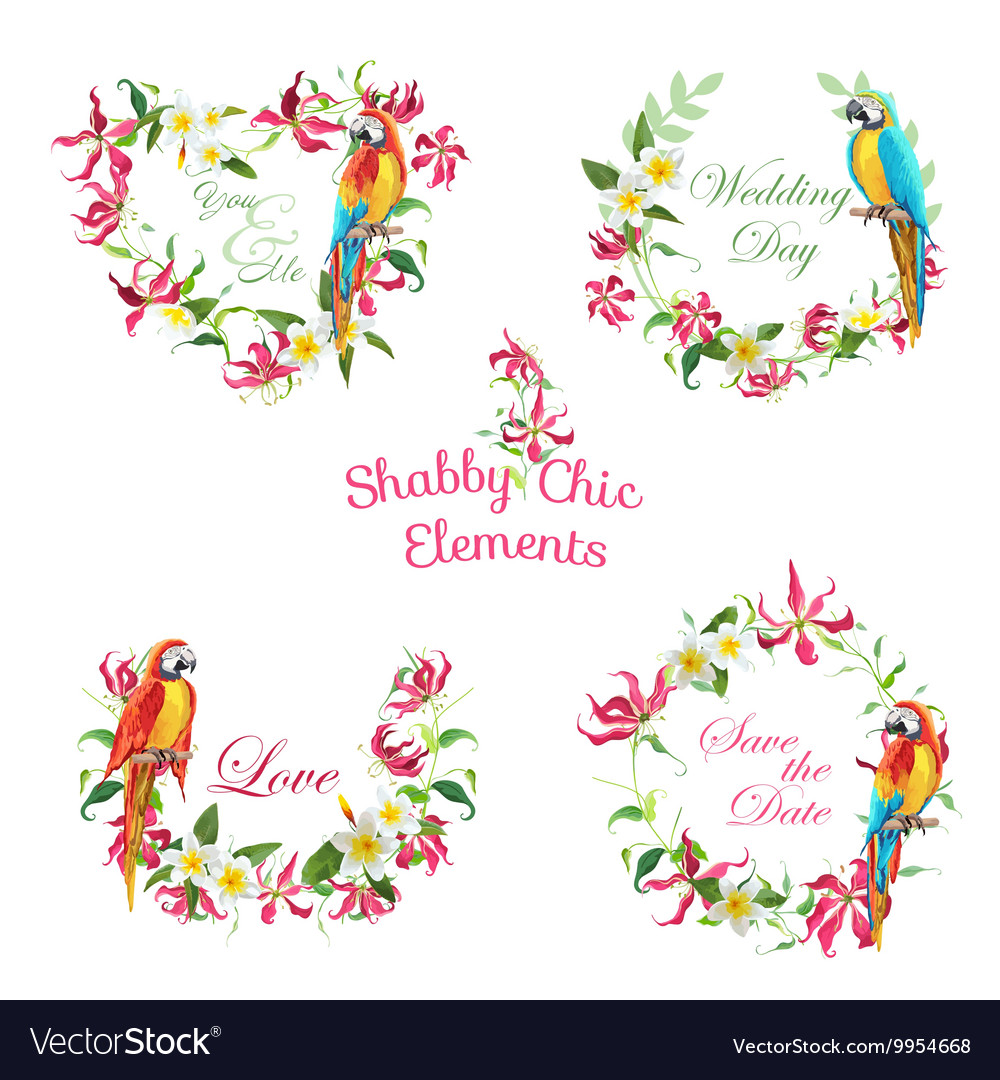 Tropical Flowers and Parrot Birds Banners and Tags vector image