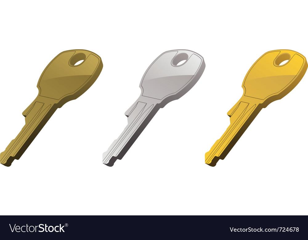 Metal keys vector image