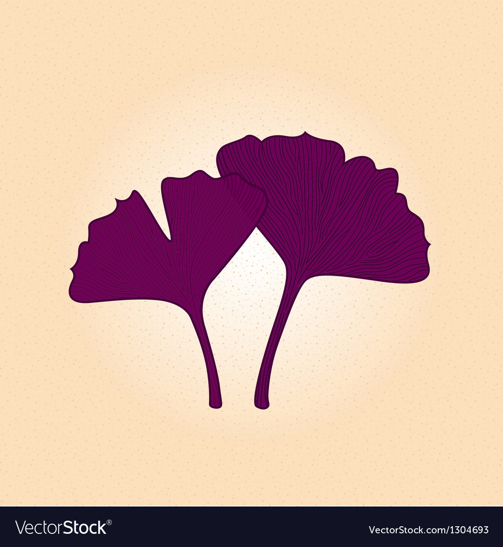 Purple gingko leaf isolated on brown background