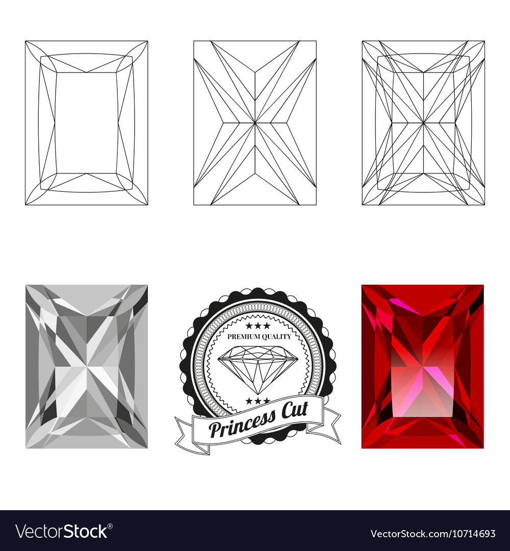 Set of princess cut jewel views vector image