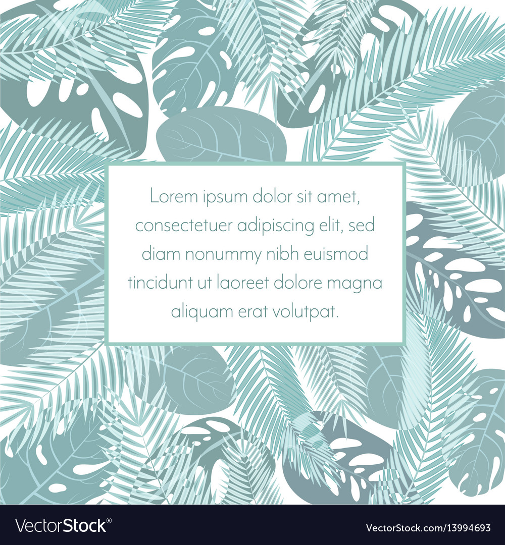 Tropic leaves background with frame for your text vector image