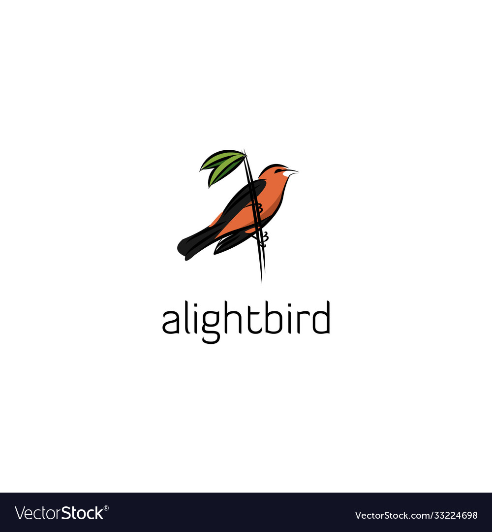 Alight bird