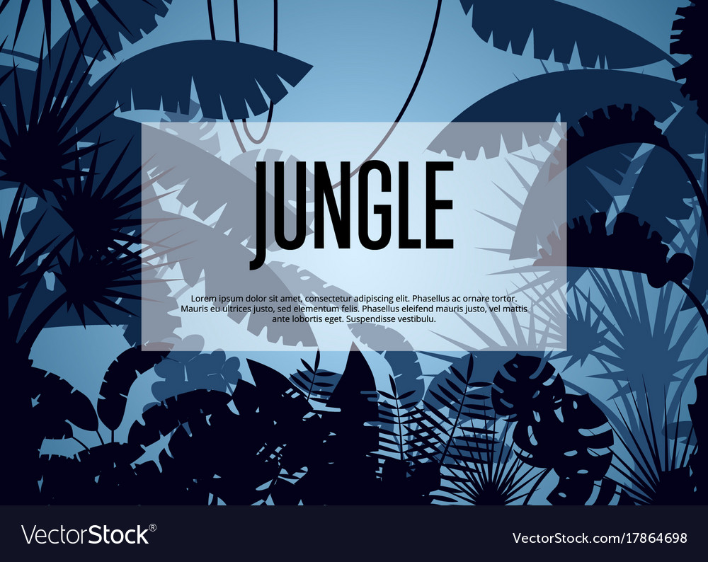 Deep tropical jungle background