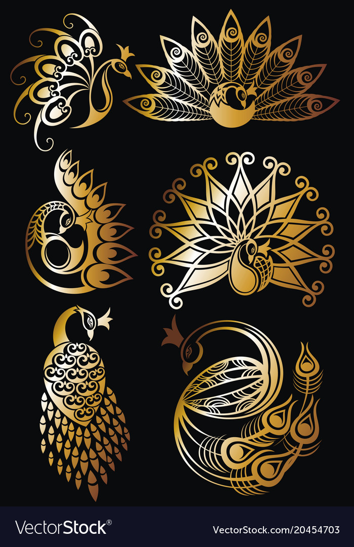Peacock bird symbols vector image