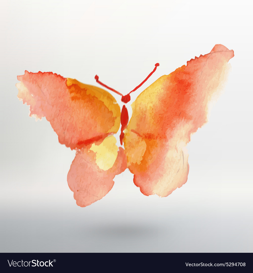 Butterfly watercolor drawing art isolated