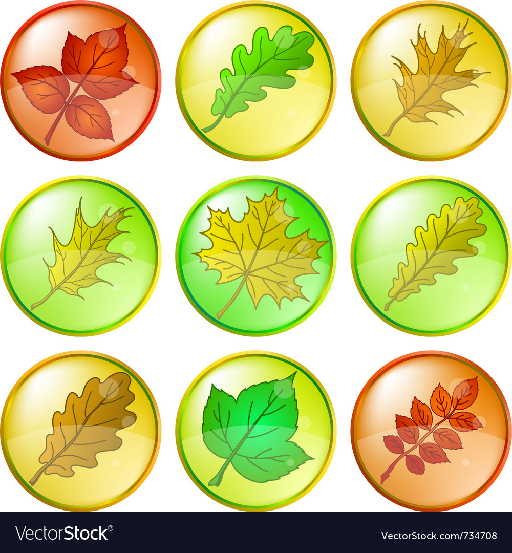 Leaves buttons set