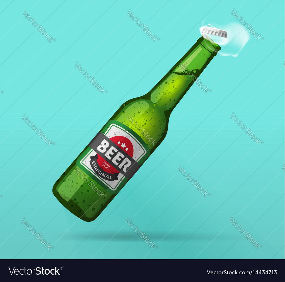 Beer bottle open green glass bottle opened cold vector image