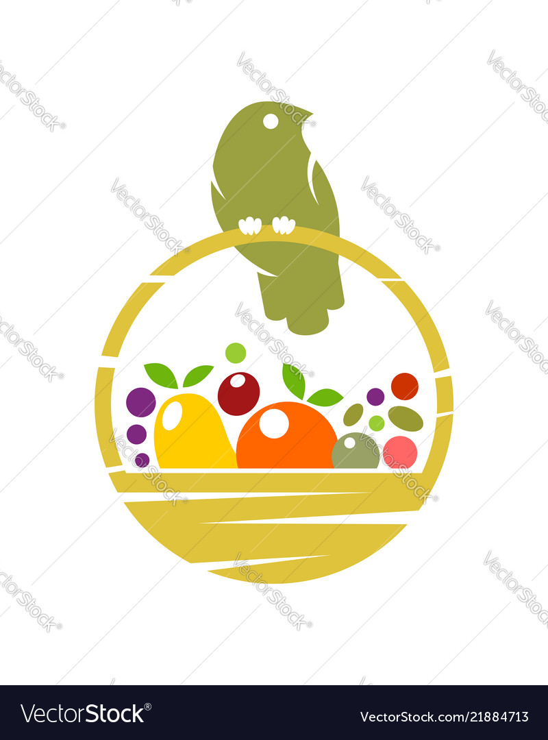 Bird on basket with fruit and vegetables