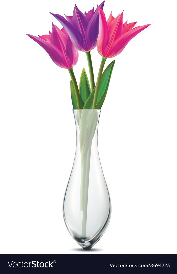 Bouquet Of Tulips In A Glass Vase Royalty Free Vector Image