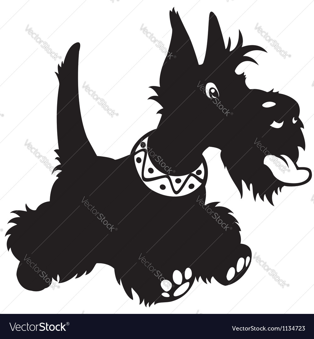 Cartoon scottish terrier black white vector image