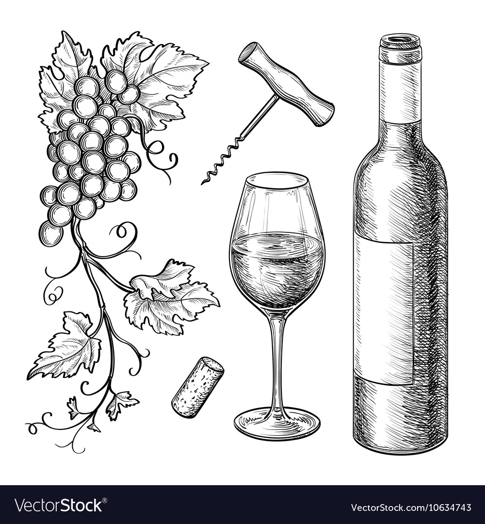 grape branches bottle glass of wine royalty free vector rh vectorstock com wine vector free download wine vector png