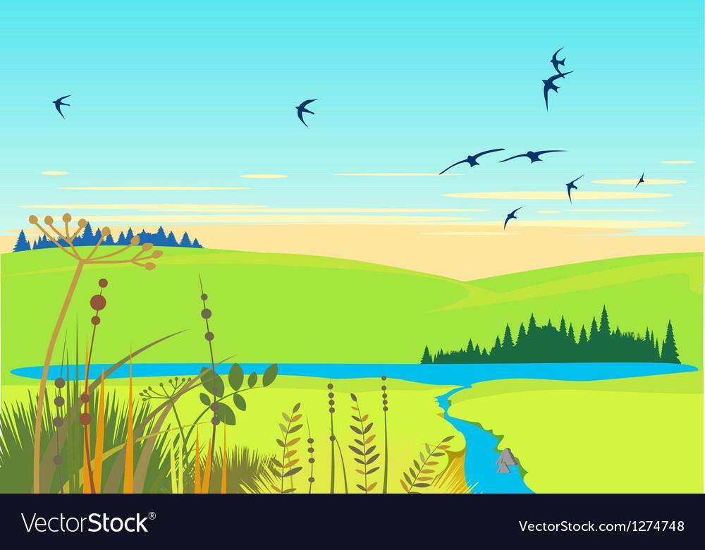 Rural lake summer landscape