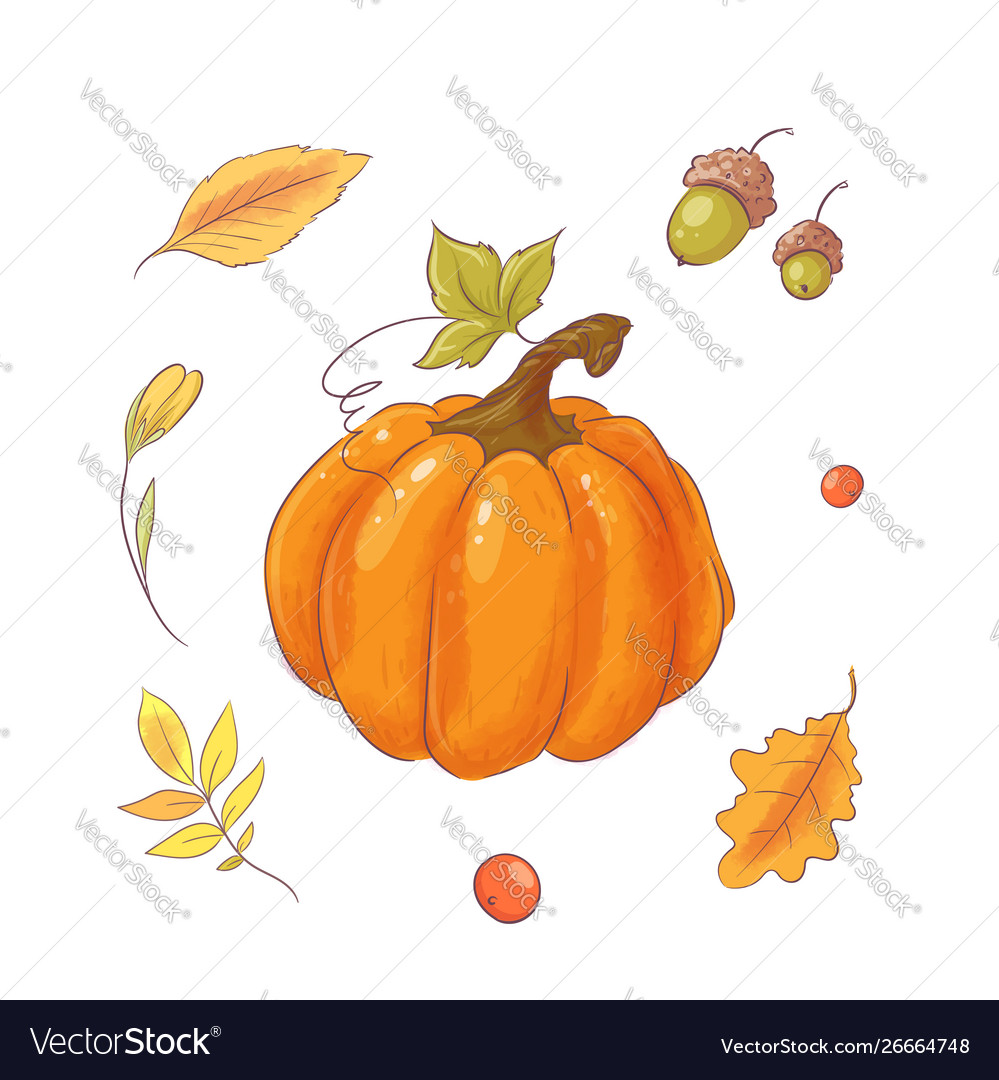 Set in style hand drawing pumpkin autumn