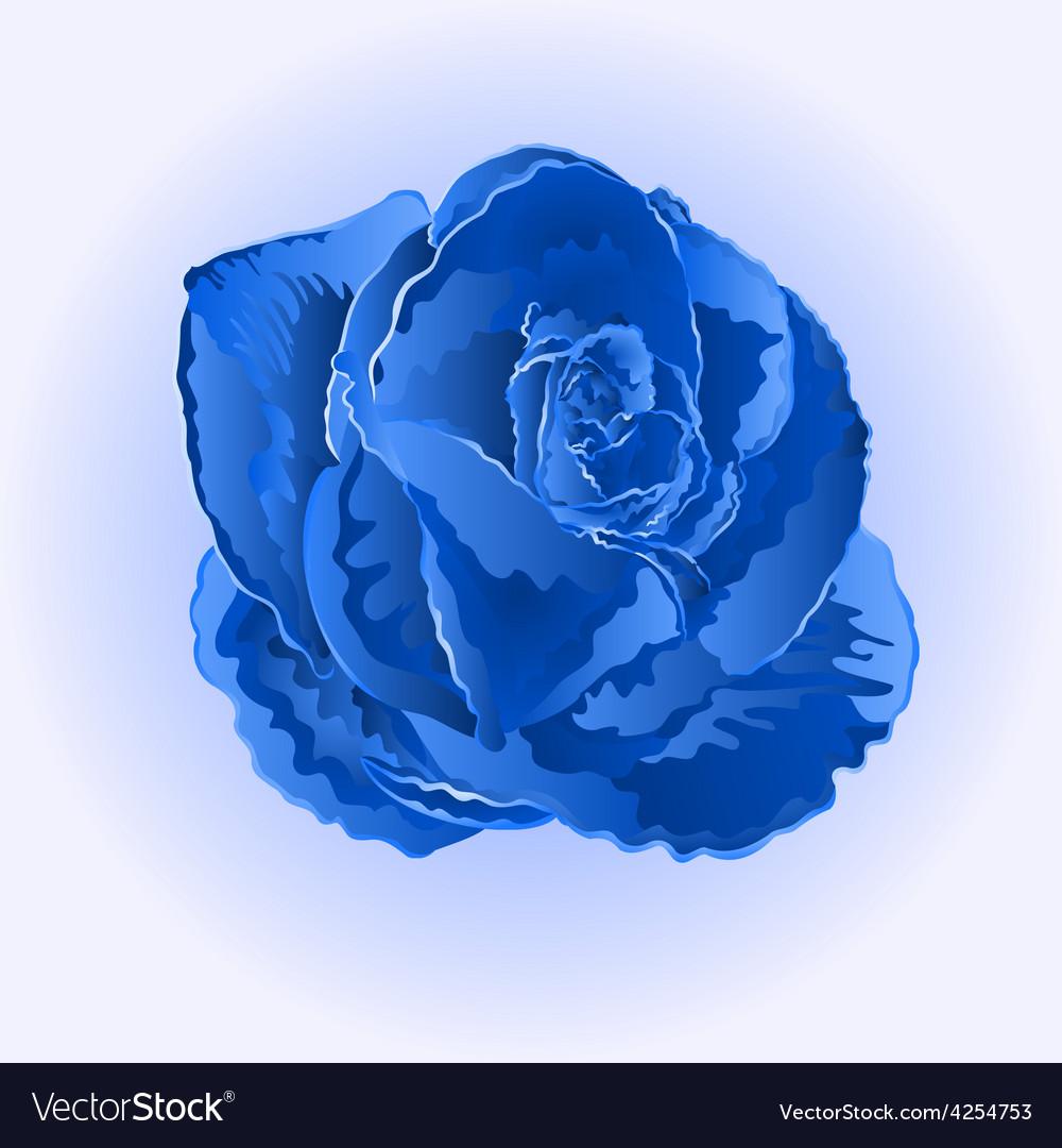 Flower Blue Rose Beautiful Rose Simple Royalty Free Vector