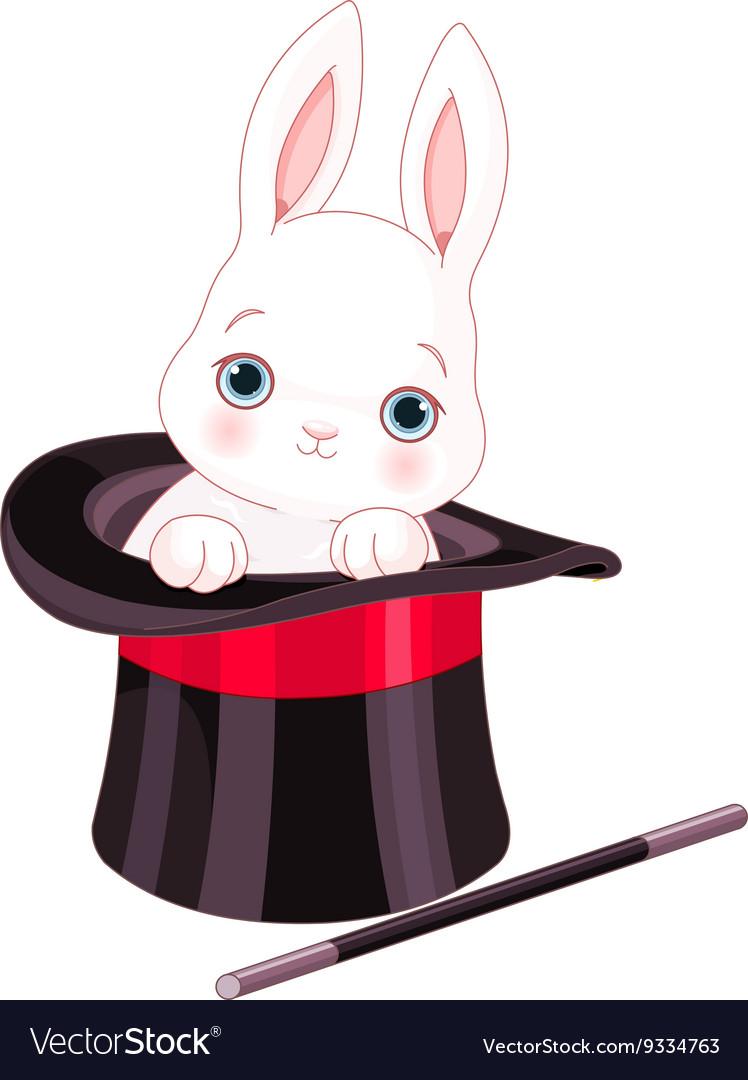 Rabbit in Top Hat Magic Trick