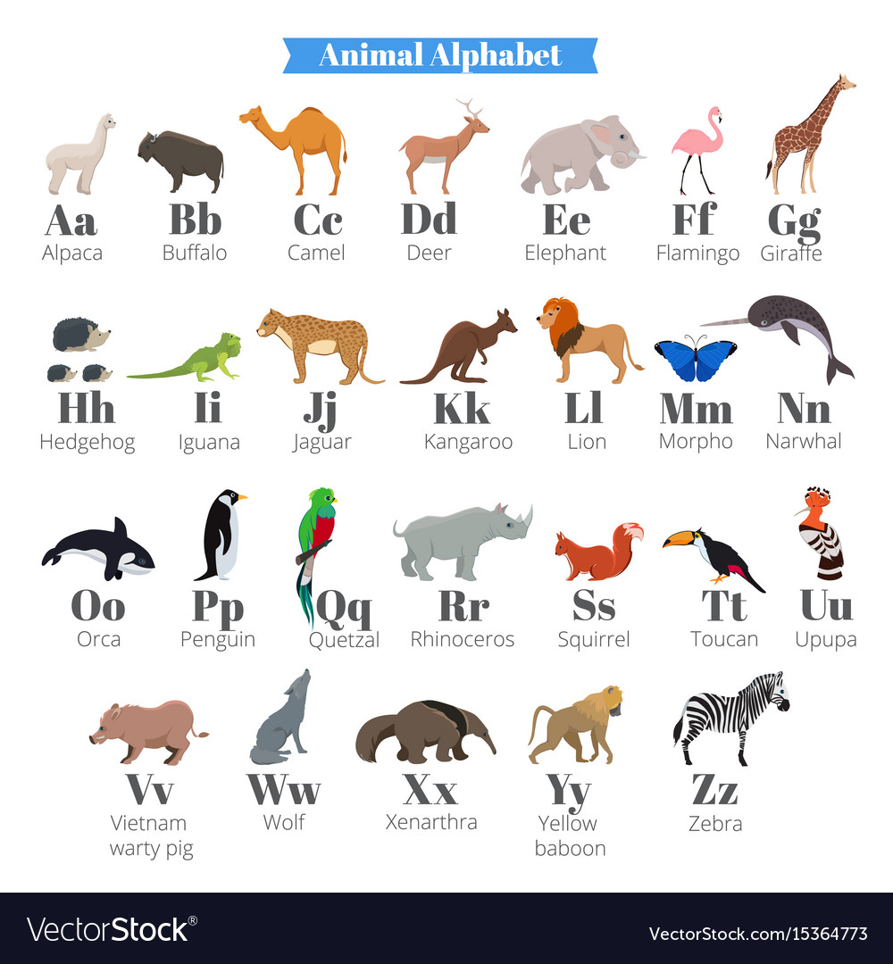 English alphabet for kids with cute wild