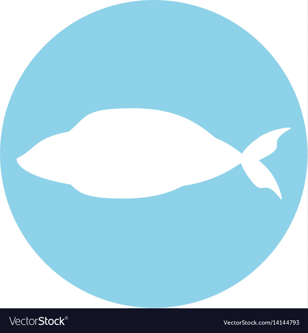 Fish fresh food image icon