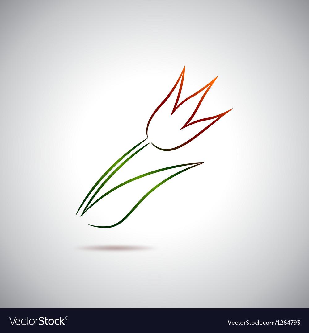 Tulip drawing vector image
