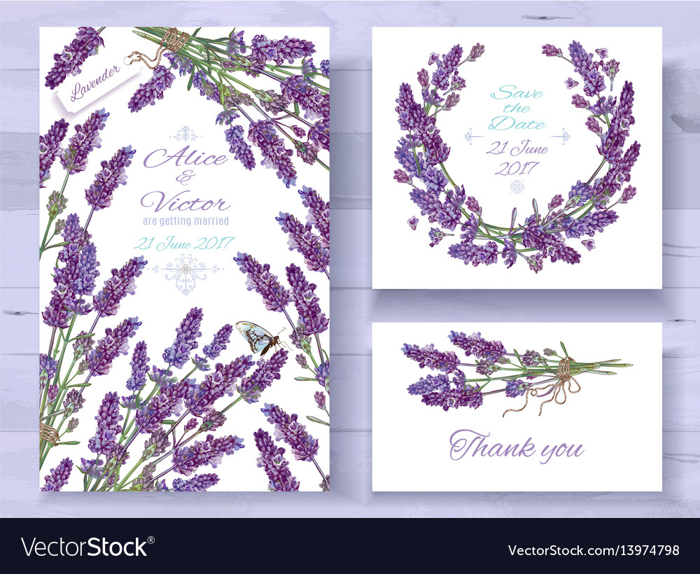 lavender invitations set royalty free vector image