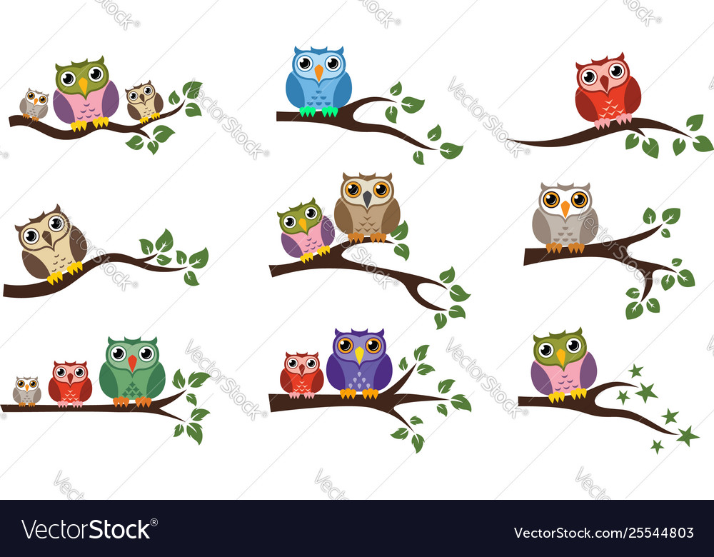 Colorful owl sitting on tree branch