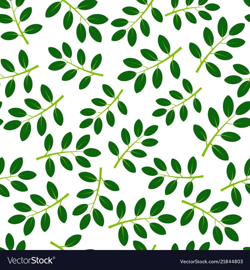 Seamless pattern with green summer leaves