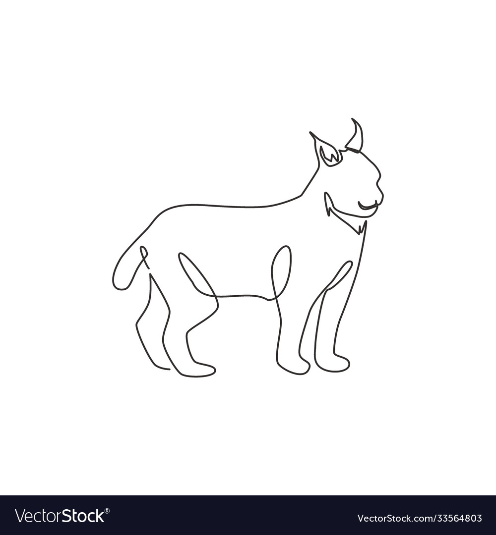 Single continuous line drawing stout lynx cat