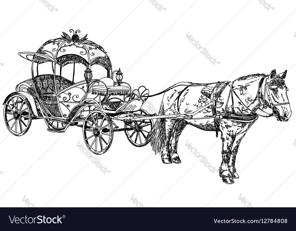 Beautiful carriage with horse