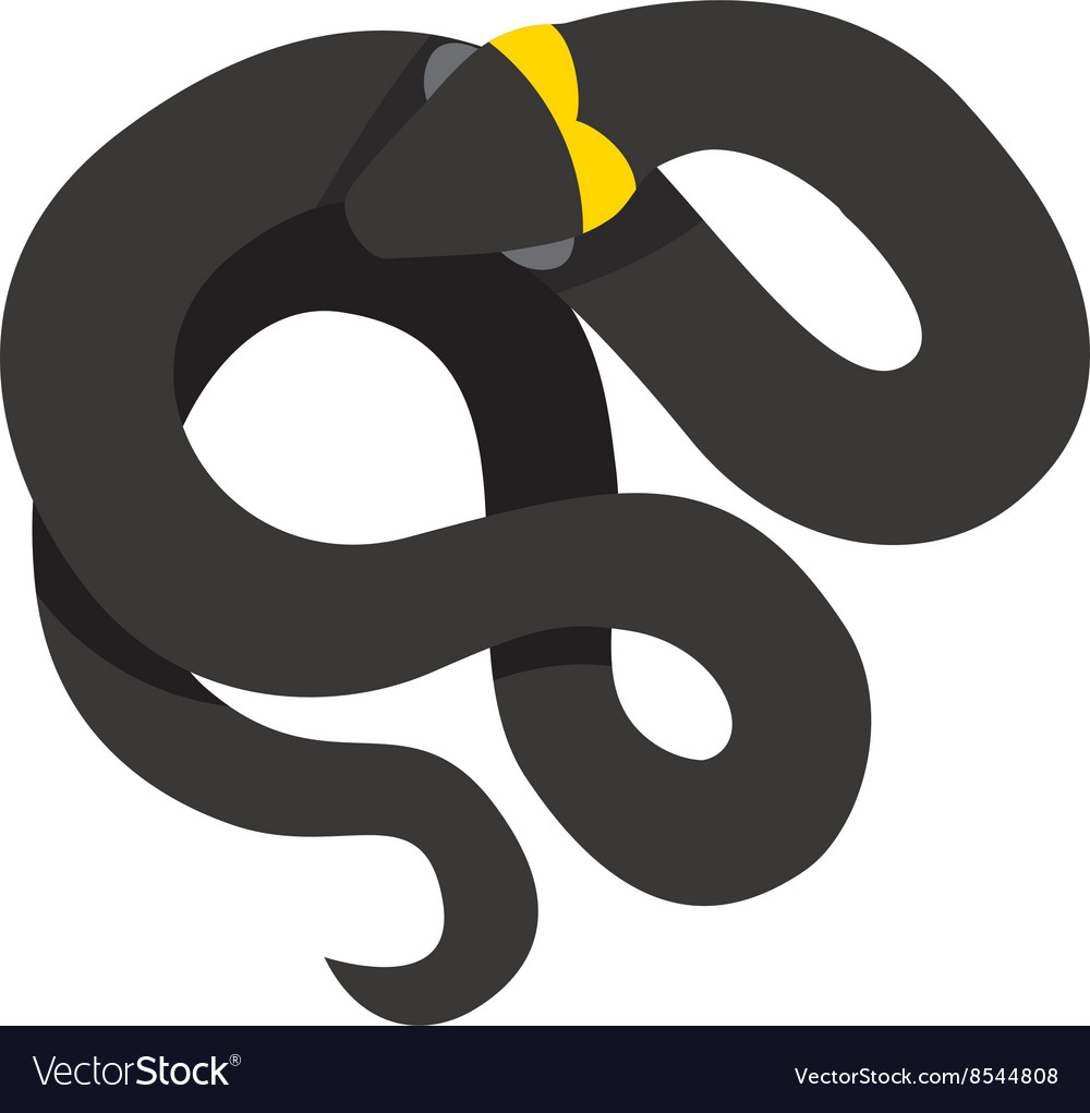 Black mamba uncoiled reptile ready to strike snake vector image