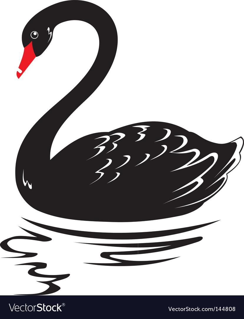Illustration of a black swan. Keywords: