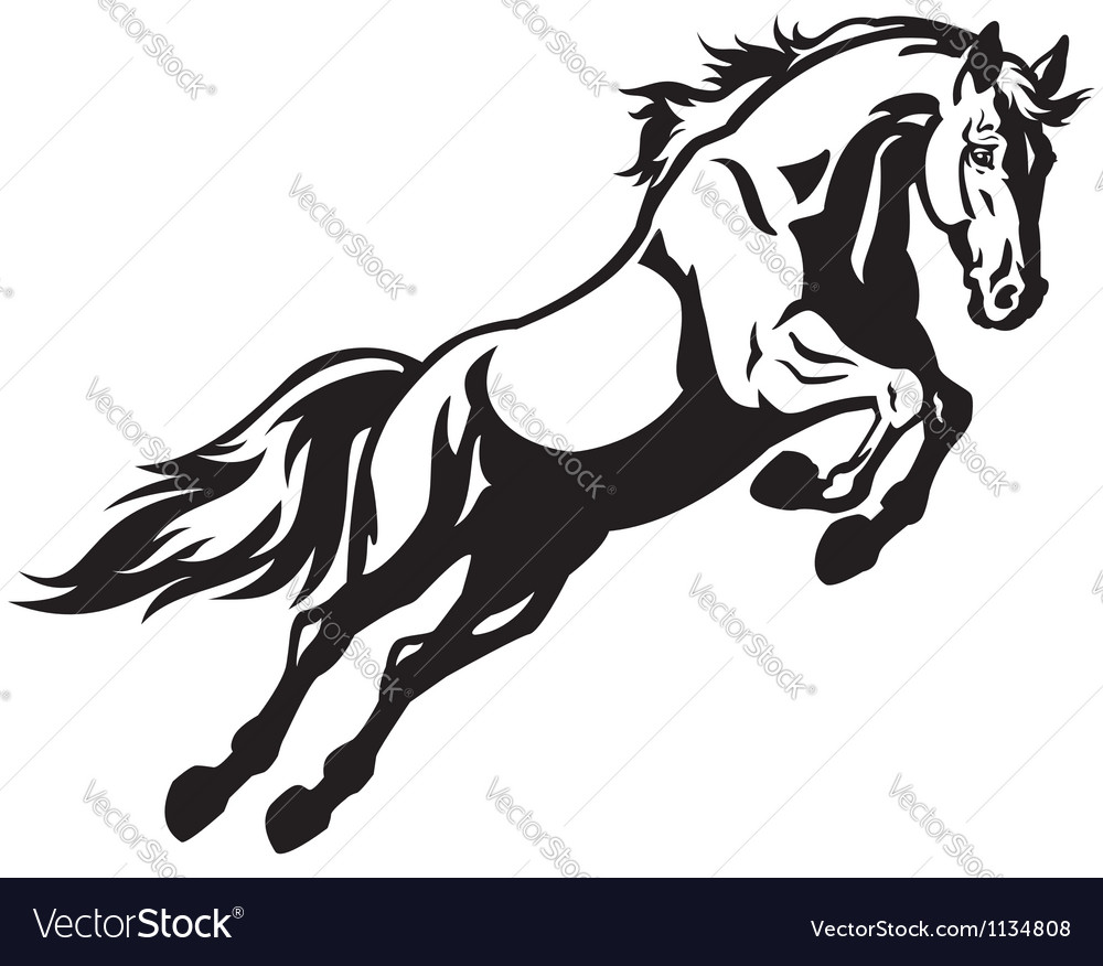 jumping horse royalty free vector image vectorstock rh vectorstock com vector horse vector horse head