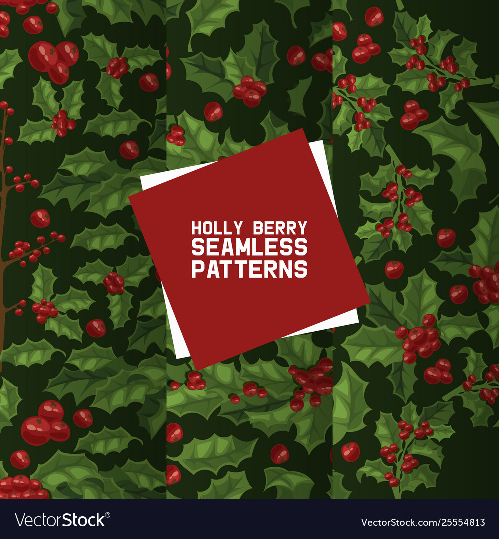 Holly berries seamless pattern christmas