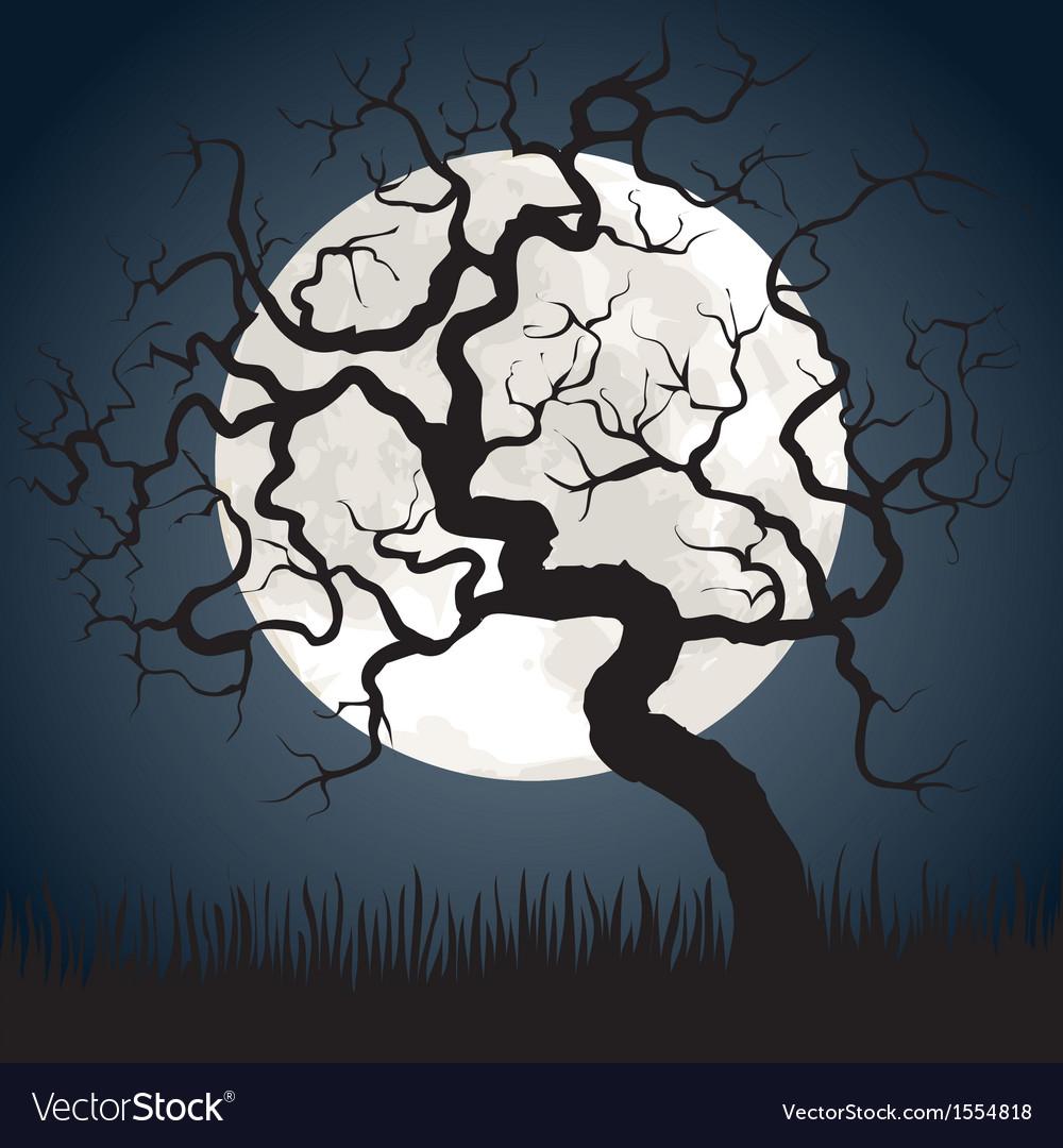 Gnarled tree at night