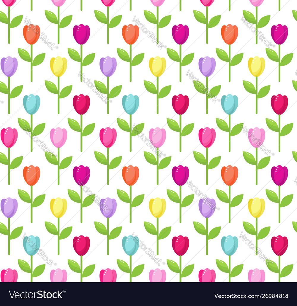 Tulip color pattern