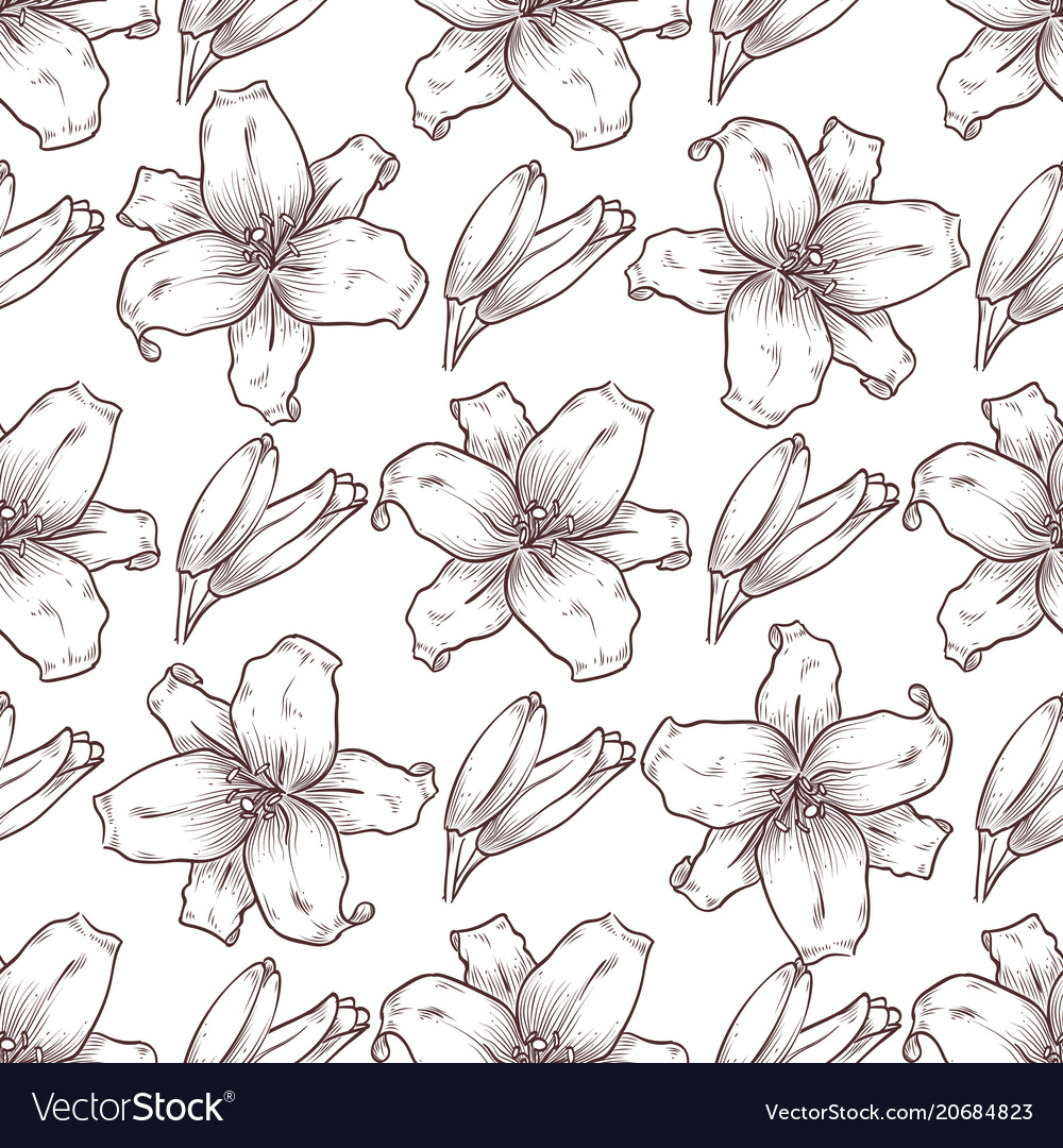 Lily seamless pattern of flowers