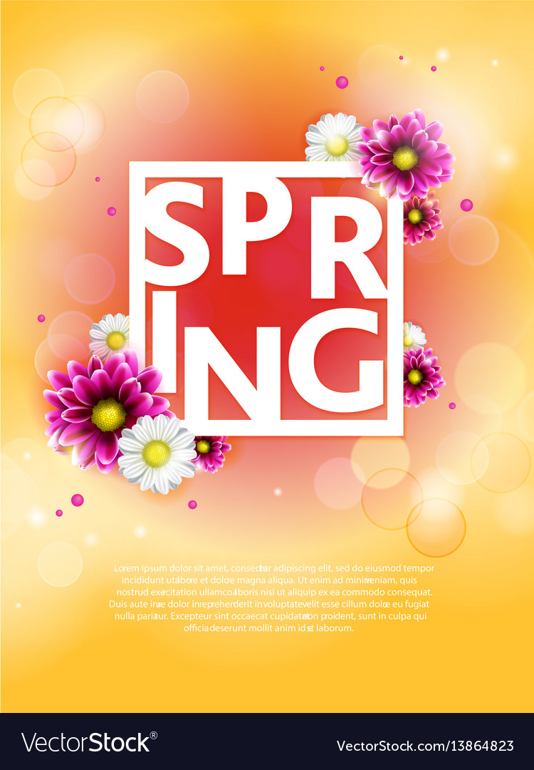Spring background with beautiful colorful flower