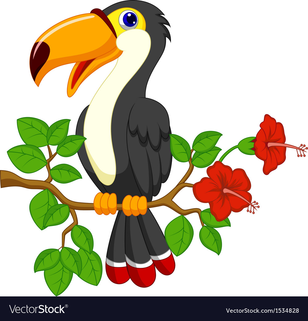 Cute toucan bird cartoon